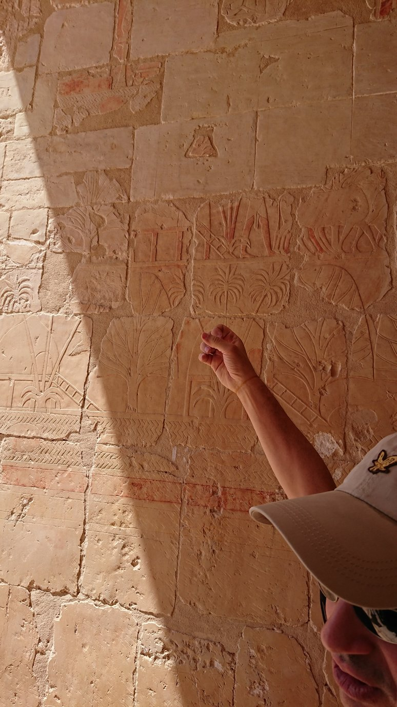 エジプト旅行 ブログ 口コミ ハトシェプスト女王葬祭殿