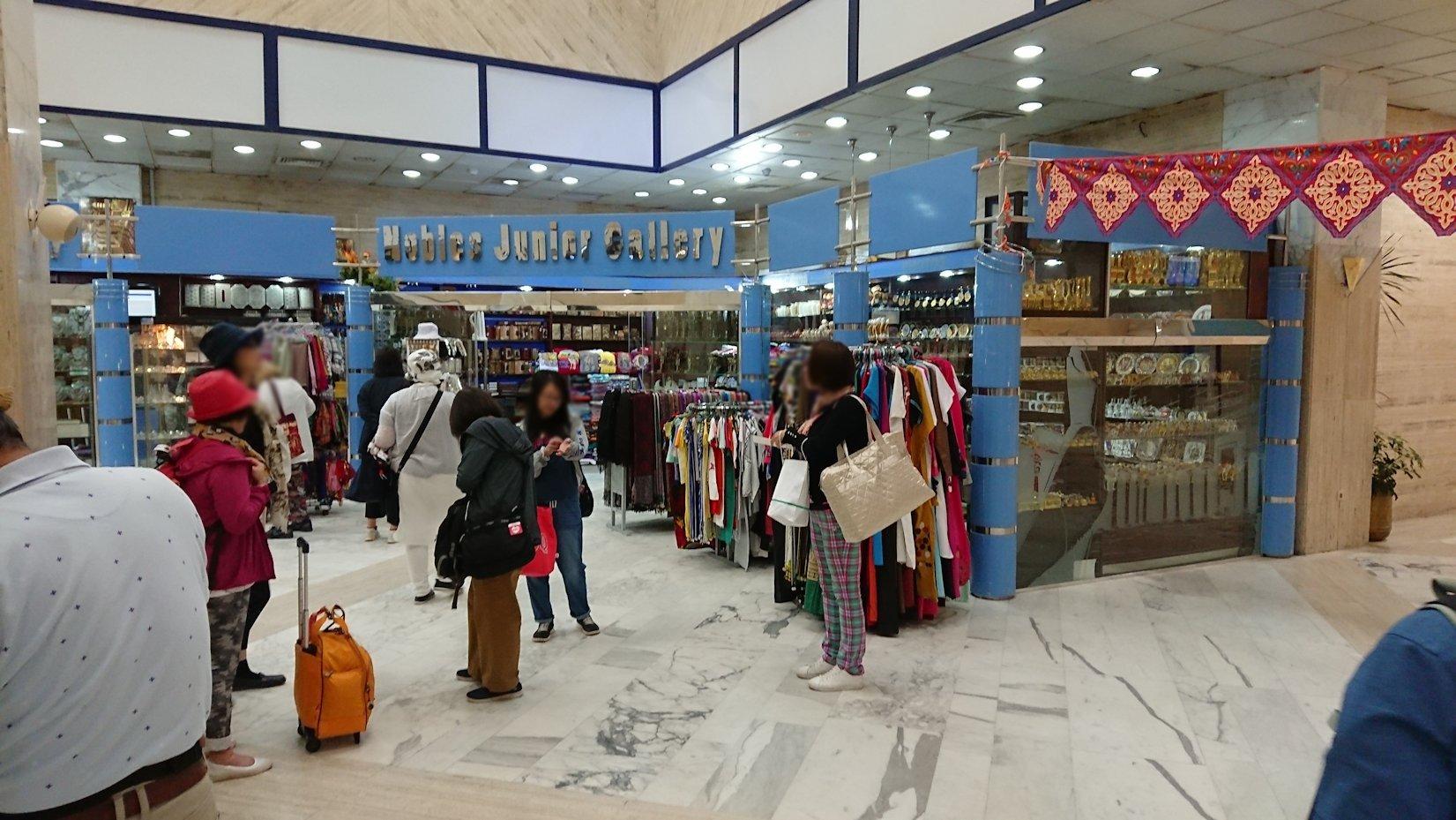 エジプト旅行 ブログ 口コミ アスワン