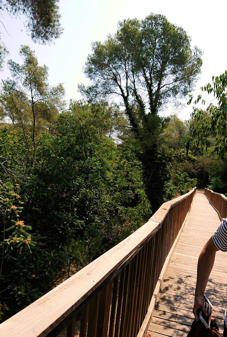 スペイン旅行 ツアー 観光 日本旅行 タラゴナ 水道橋 ブログ 口コミ