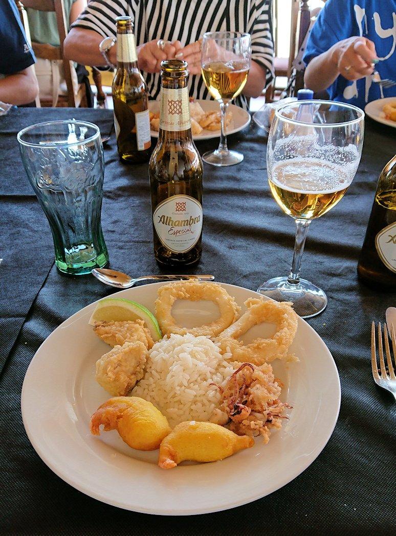スペイン旅行 ツアー 観光 日本旅行 グラナダ バス 昼食 パーキング 移動 ブログ 口コミ