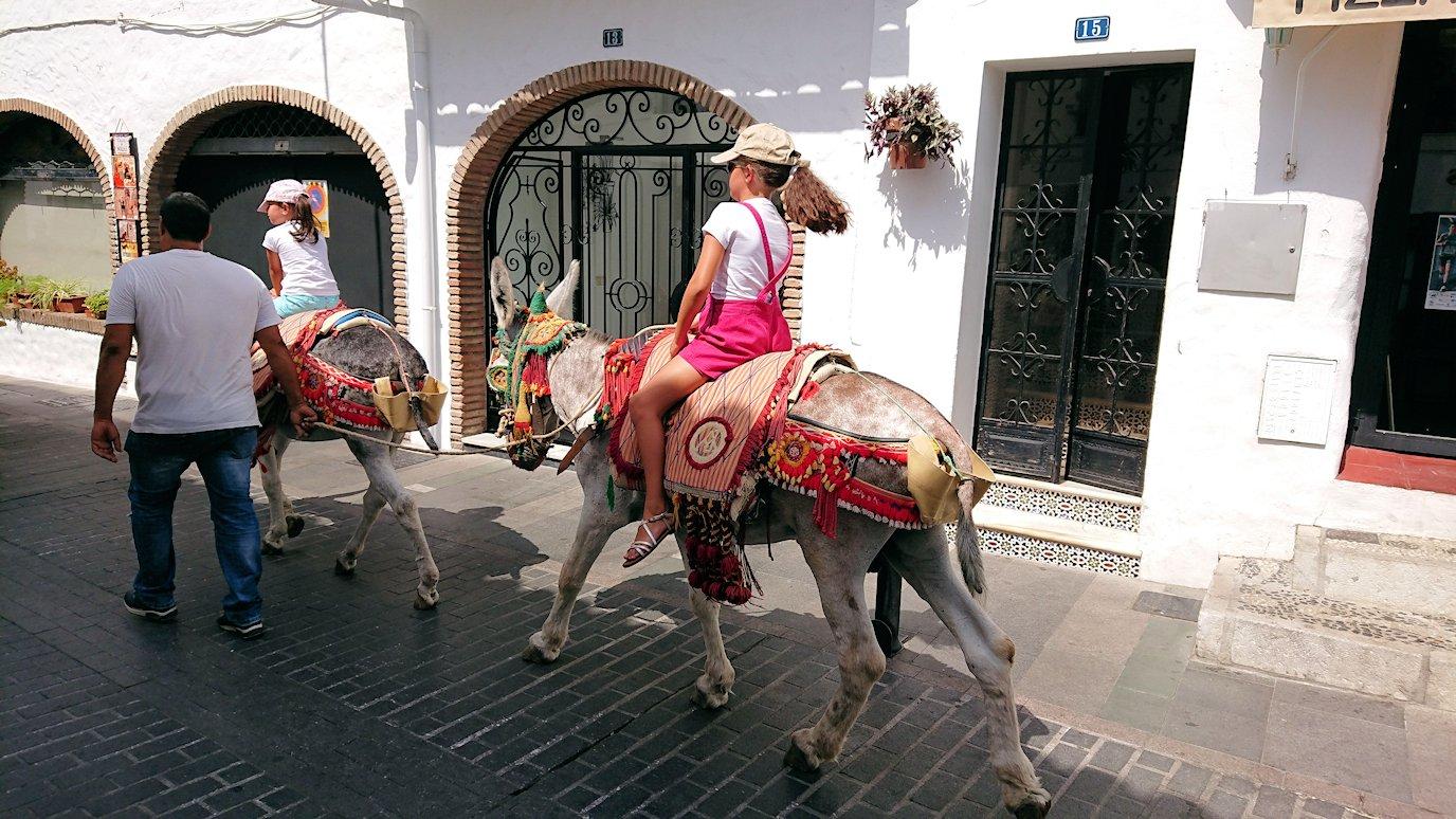 スペイン旅行 ツアー 観光 日本旅行 アンダルシア ミハス 雑貨 闘牛 ロバ アルガンオイル お土産 Tシャツ ブログ 口コミ
