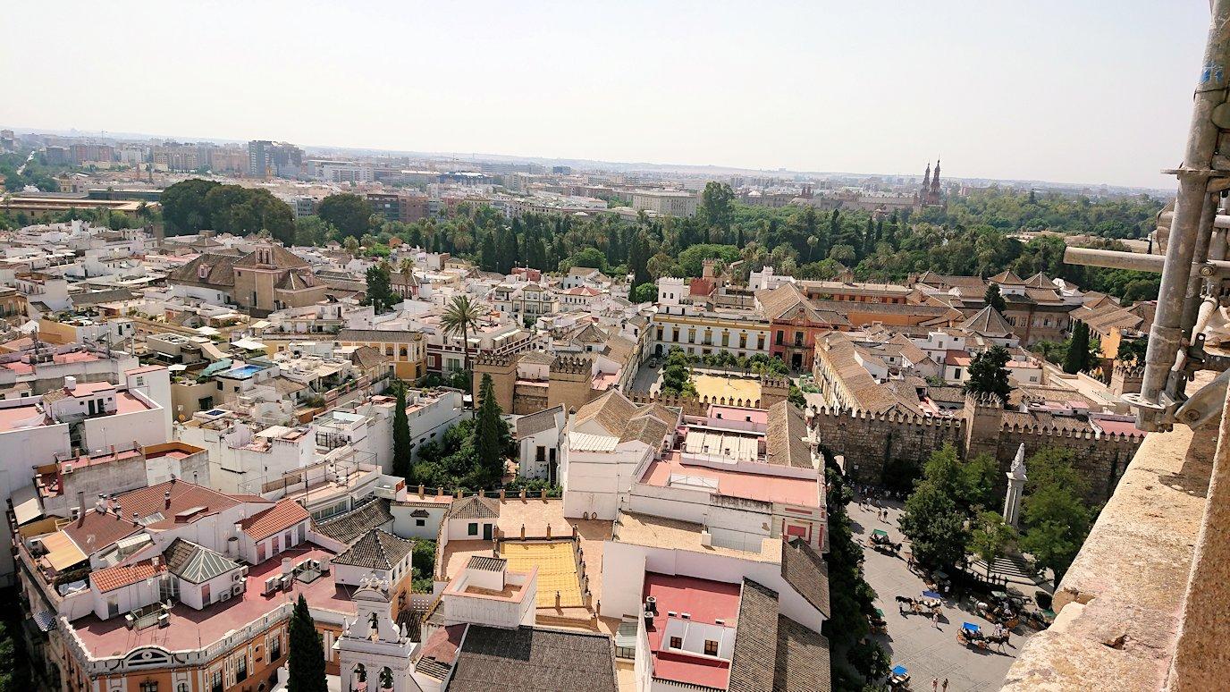 スペイン旅行 ツアー 観光 日本旅行 セビリア コロンブス カテドラル ヒラルダの搭 ブログ 口コミ