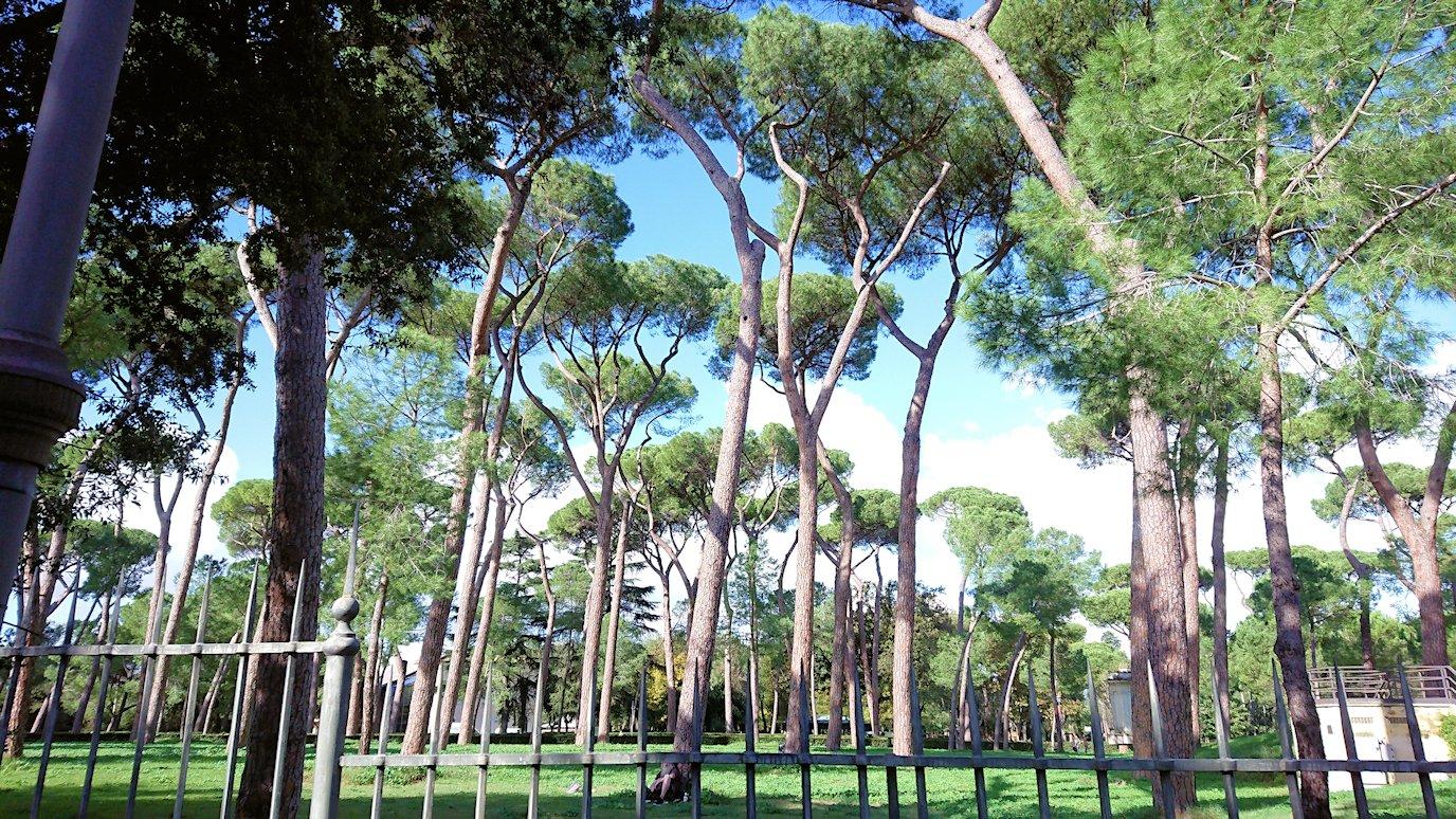 ローマ市内をバスから見た公園の風景