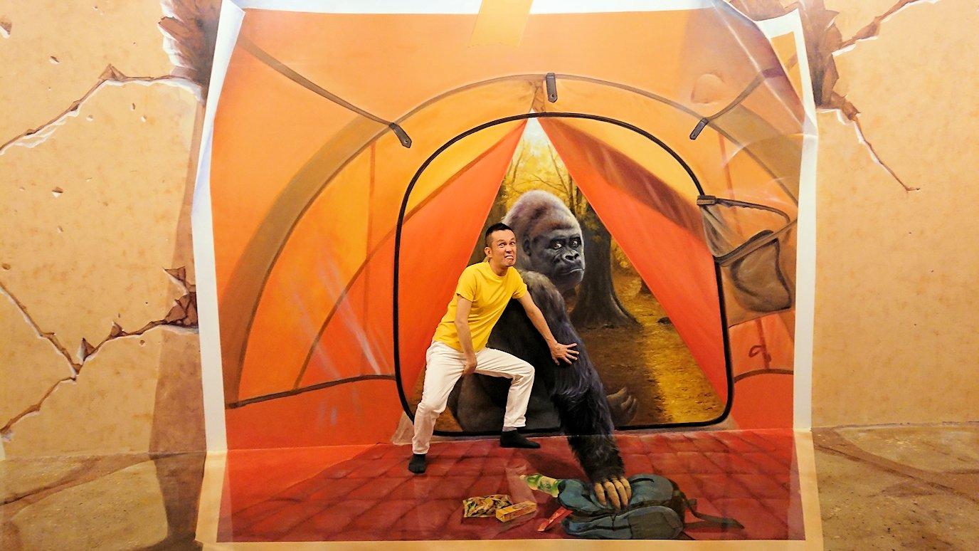 トリックアートミュージアム「アーティナス」で写真を撮りまくる男達3