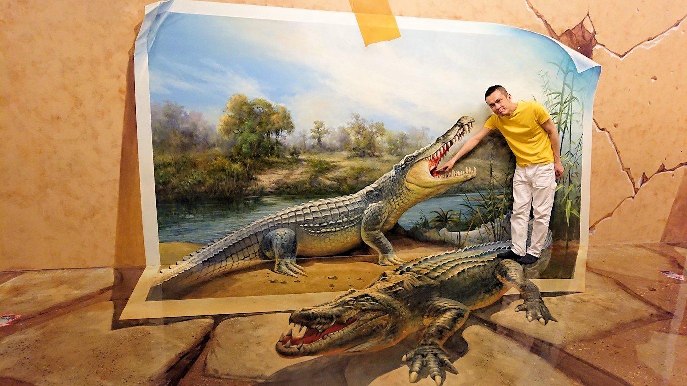 トリックアートミュージアム「アーティナス」で写真を撮りまくる男達6