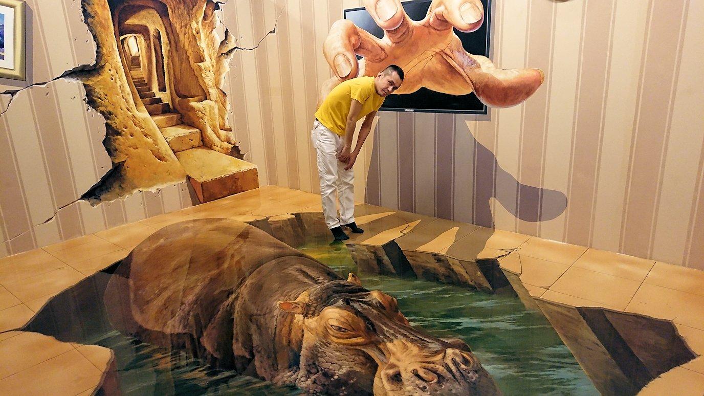 トリックアートミュージアム「アーティナス」はとても楽しめます
