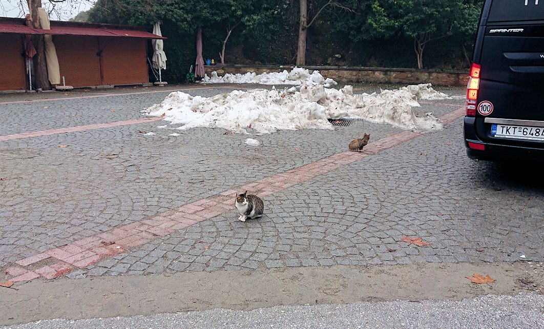 メテオラ地方のアギオス・ニコラオス修道院の入口付近に到着