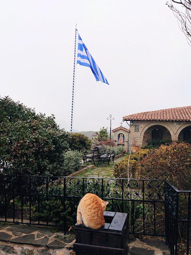 メテオラ地方でアギオス・ステファノス修道院でも猫
