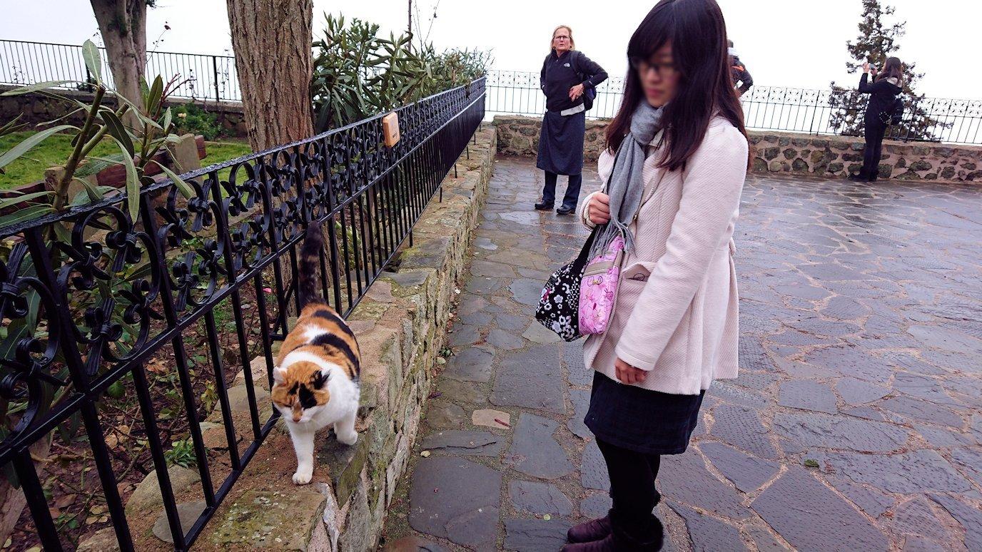 メテオラ地方でアギオス・ステファノス修道院でも猫3