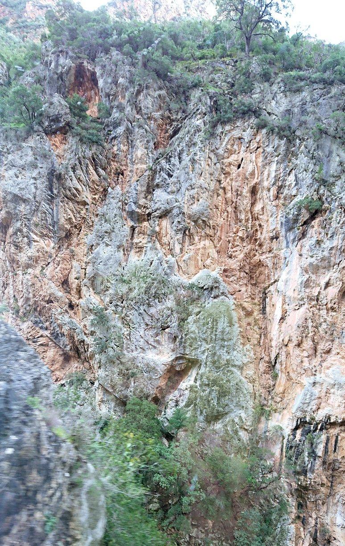 オドンドトス登山鉄道列車からの景色6