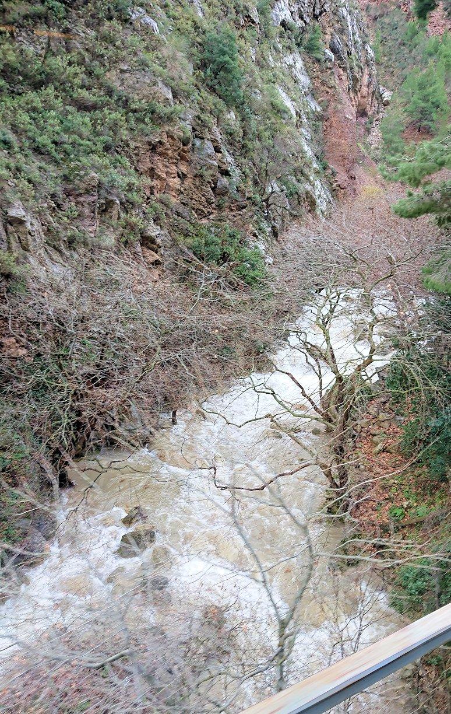 オドンドトス登山鉄道列車から見える絶景の写真5