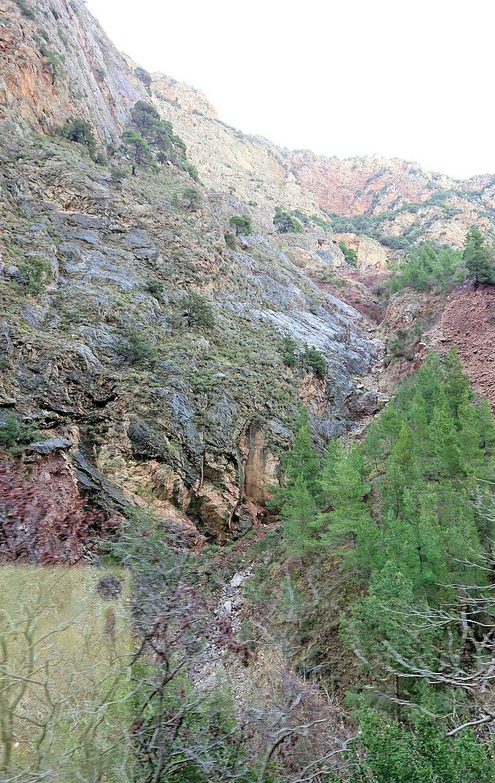 オドンドトス登山鉄道列車から見える絶景の写真6