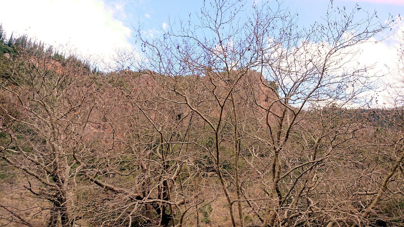 オドンドトス登山鉄道列車に乗ってカラヴリタに向かう道中の景色2