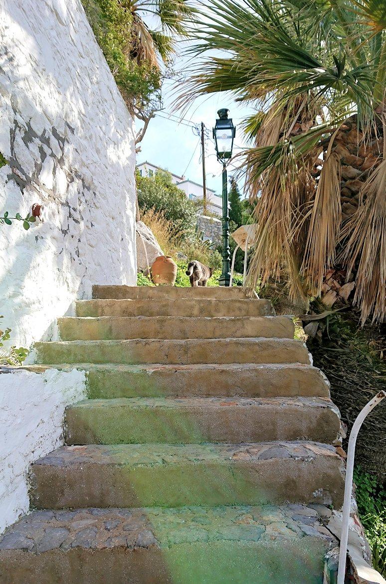エーゲ海のイドラ島で上に繋がる階段を進む
