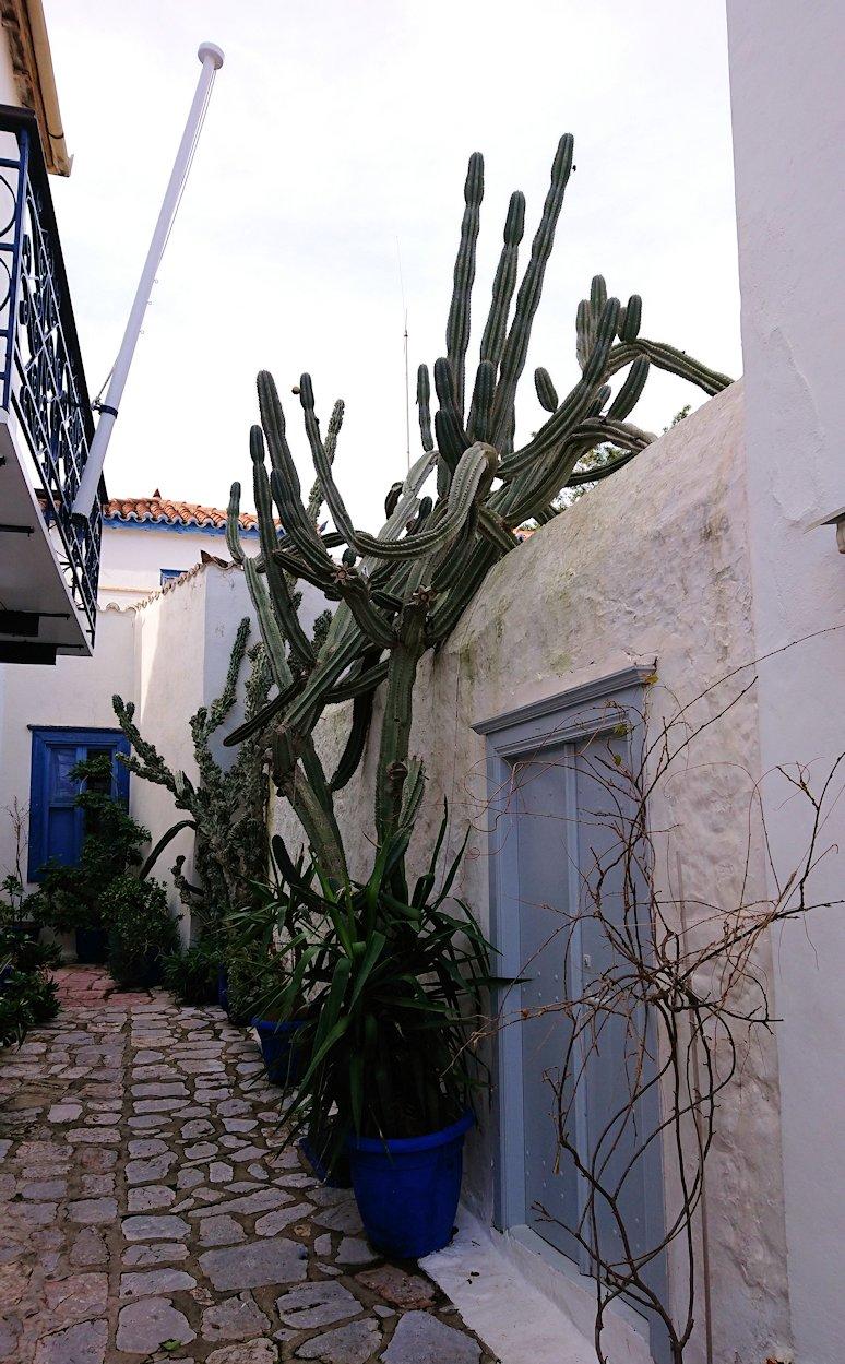 エーゲ海のイドラ島のオシャレな街並み5