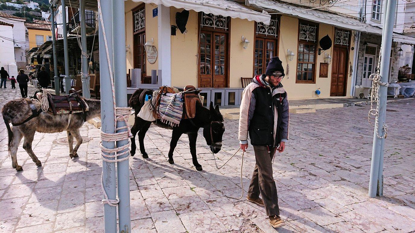 エーゲ海のイドラ島のオシャレな街でロバの体験を