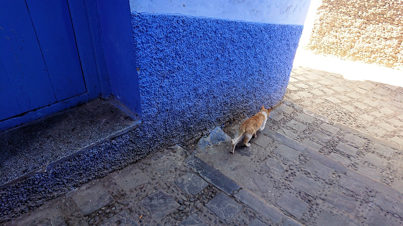 モロッコのシャウエンの街で辺りをブラブラ歩く3