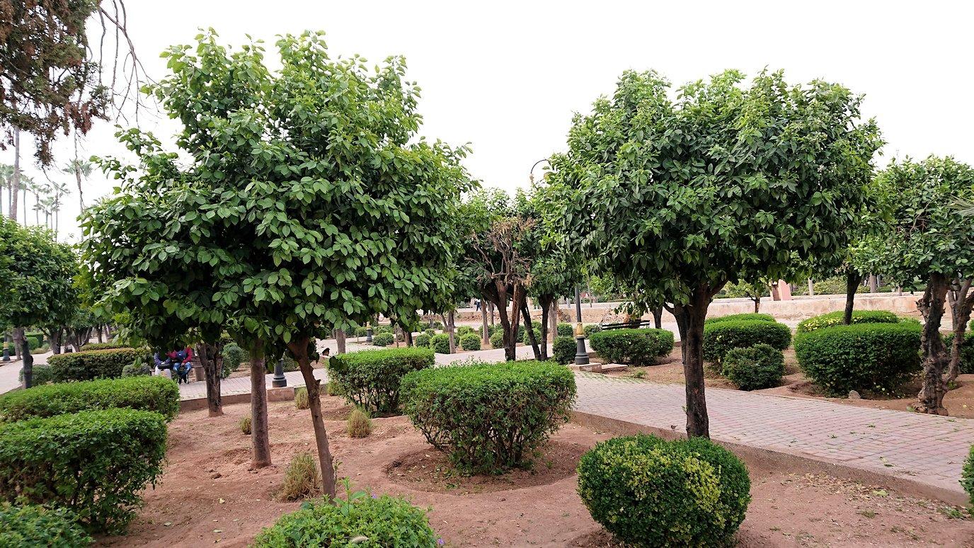 モロッコのマラケシュ市内でクトゥビア・モスク付近の公園の景色1