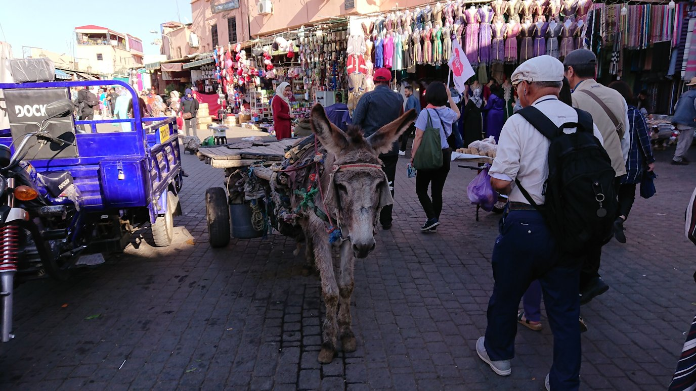 モロッコ・マラケシュでジャマ・エル・フナ広場に近づく2
