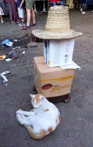モロッコ・マラケシュでジャマ・エル・フナ広場に続く路地の様子4