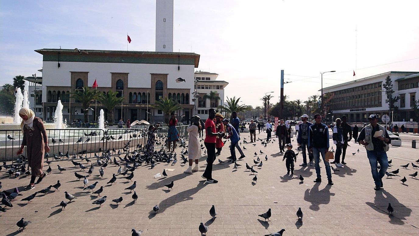 カサブランカのムハンマド5世広場で沢山の鳩と遭遇3