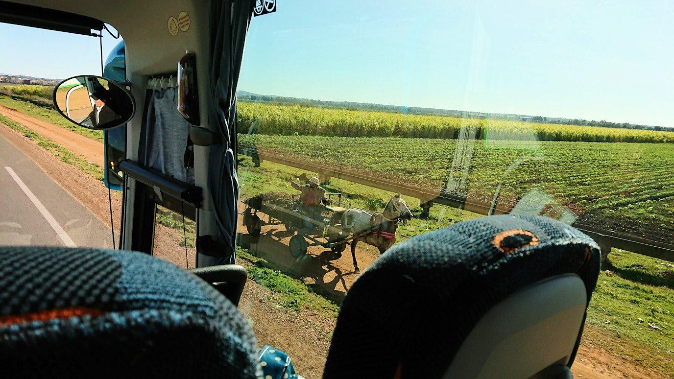 バスでラバトからシャウエンに向かう途中の景色2