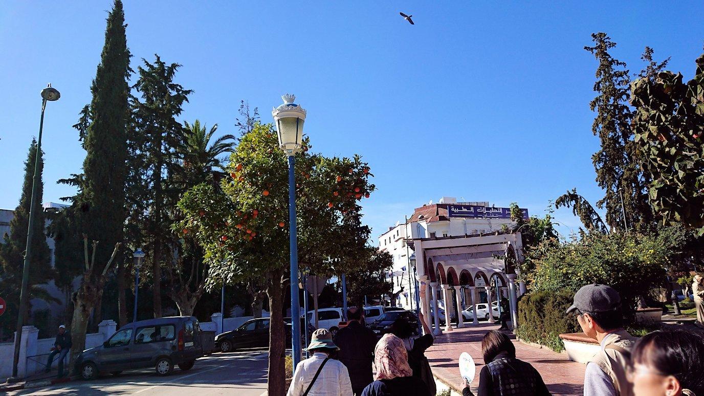 モロッコのシャウエンの街で観光が終了しガイドさんとお別れしてバスに戻る1