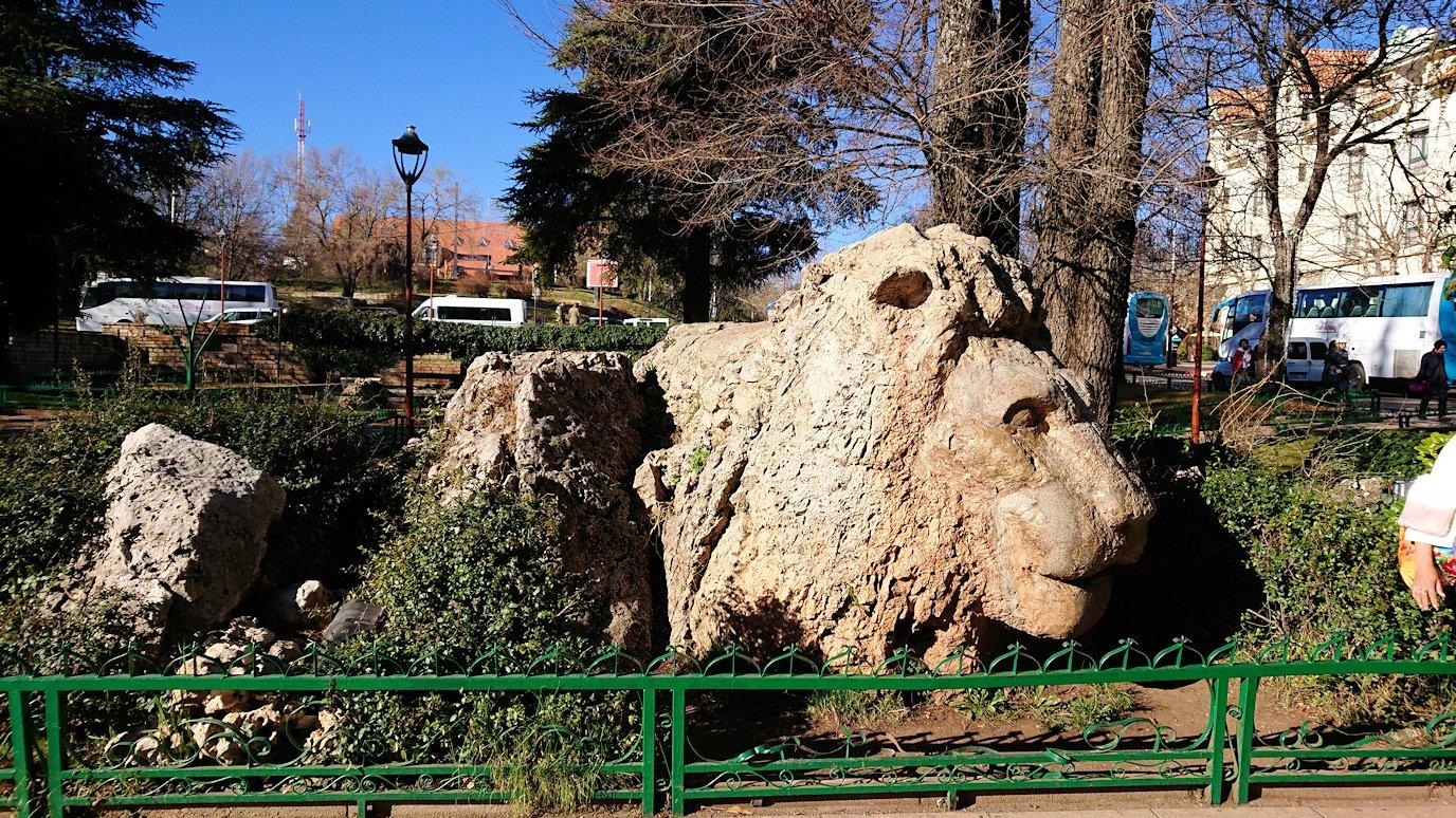 モロッコのイフレンの街に到着しアトラスライオンと対面1