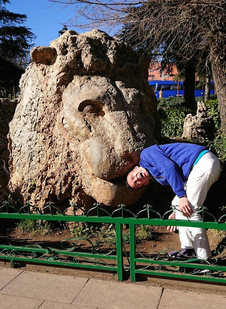 モロッコのイフレンの街に到着しアトラスライオンと対面4