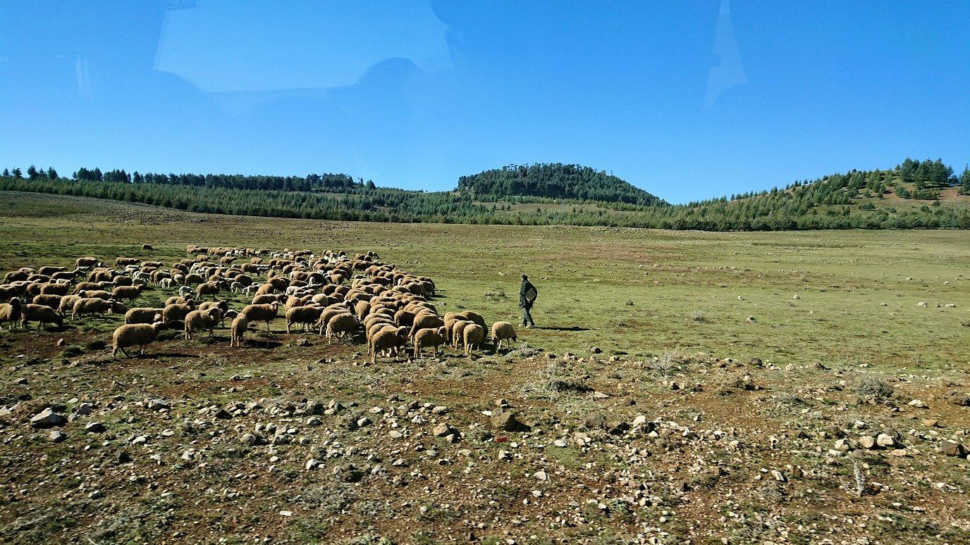 モロッコでイフレンの街からミデルトに向かう途中の景色