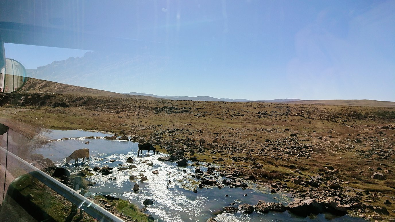 モロッコでイフレンの街からミデルトに向かう途中の景色6