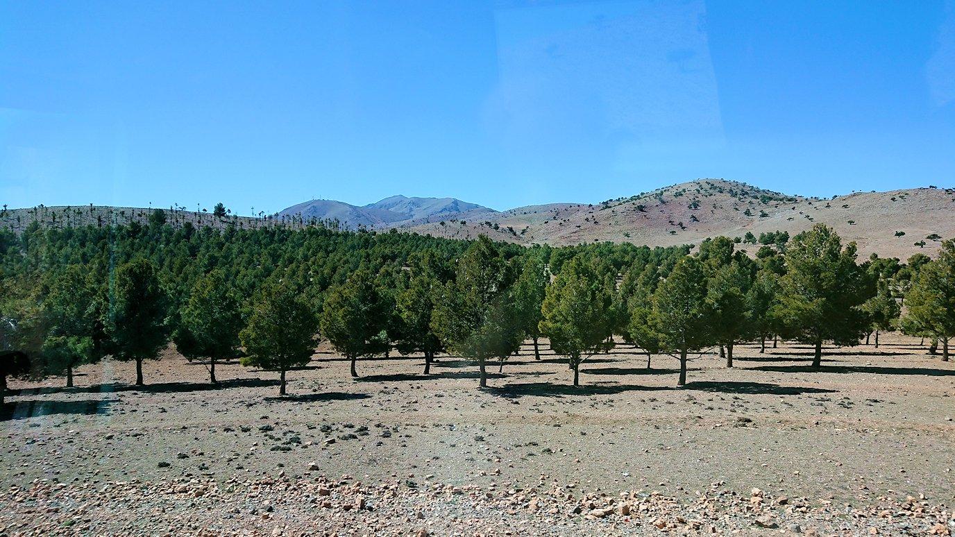 モロッコのミデルトからズイズ渓谷に移動する4