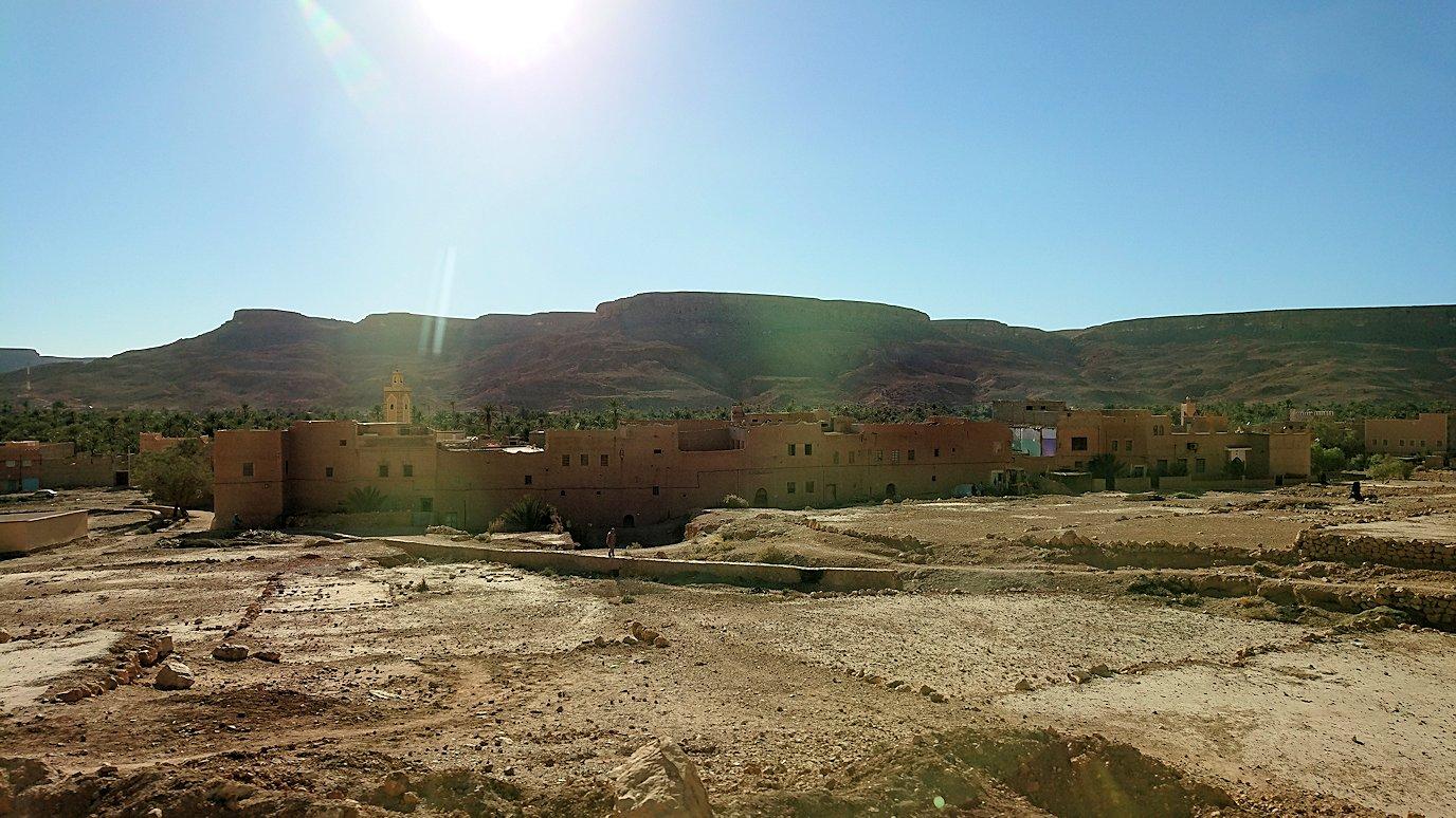 エルフードに向かう途中にあるオアシス地帯の景色8