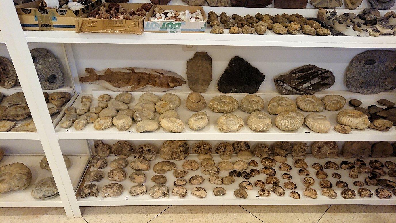 モロッコのエルフードで化石のお土産物屋さんの様子3
