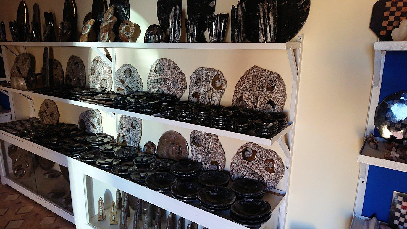 モロッコのエルフードで化石のお土産物屋さんの化石1
