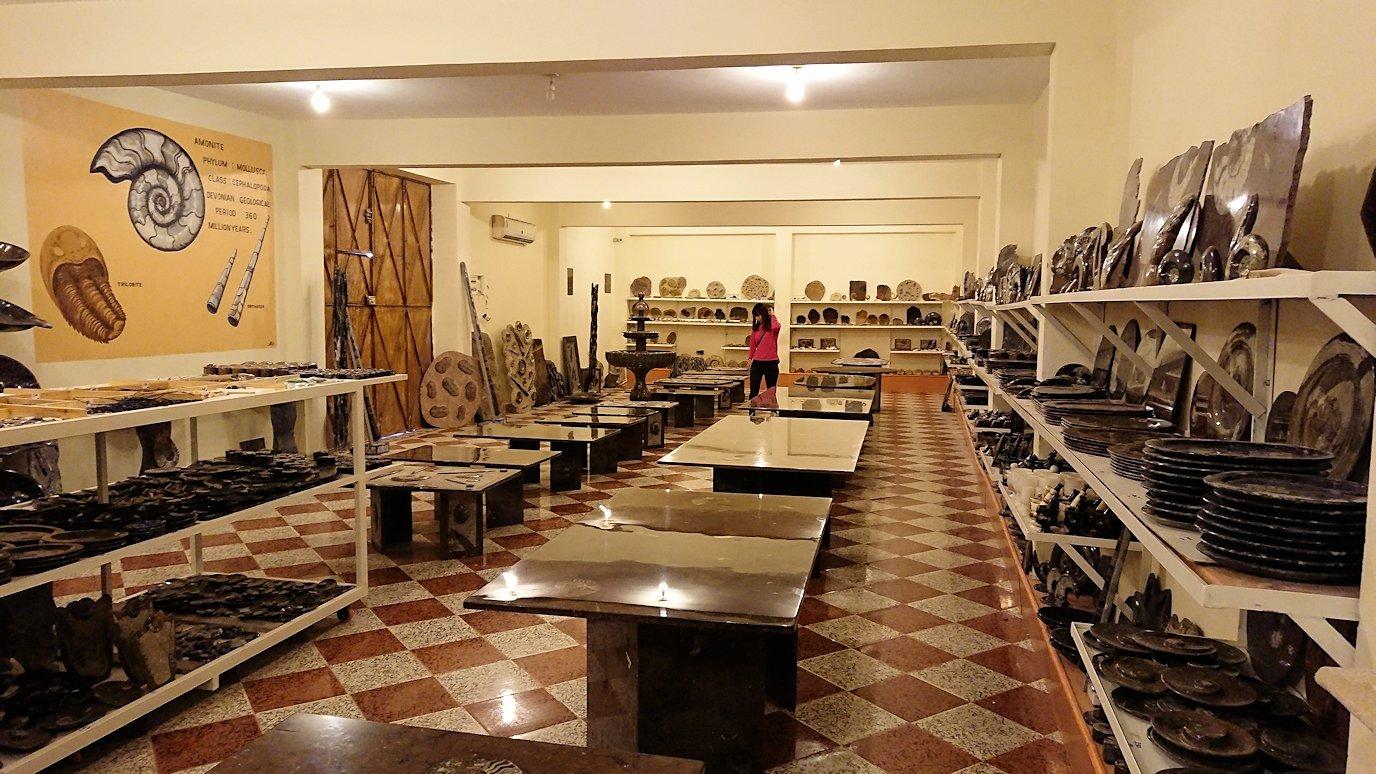 モロッコのエルフードで化石のお土産物屋さんの化石2