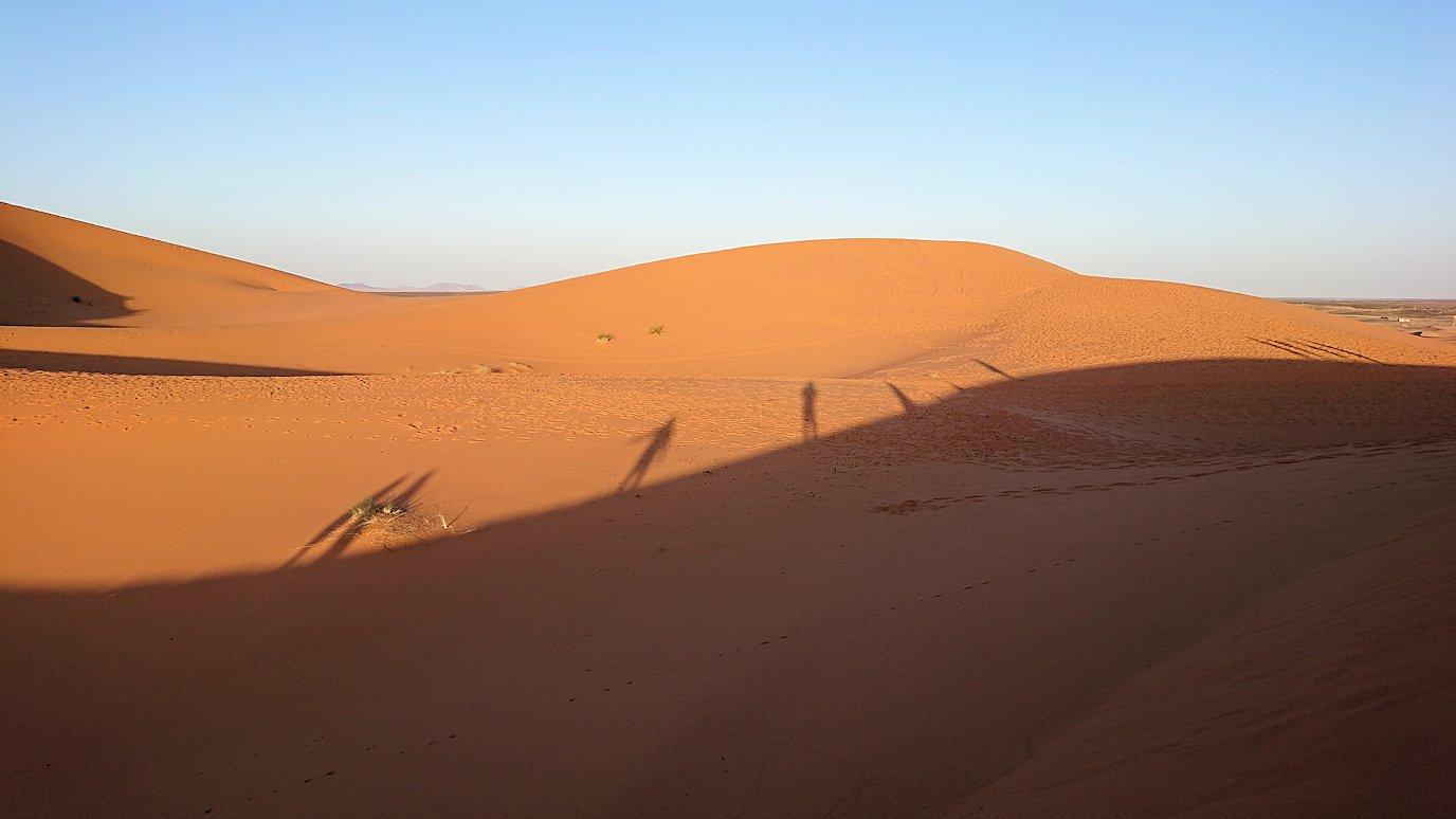 モロッコでサハラ砂漠の朝日鑑賞を終えて戻ります7