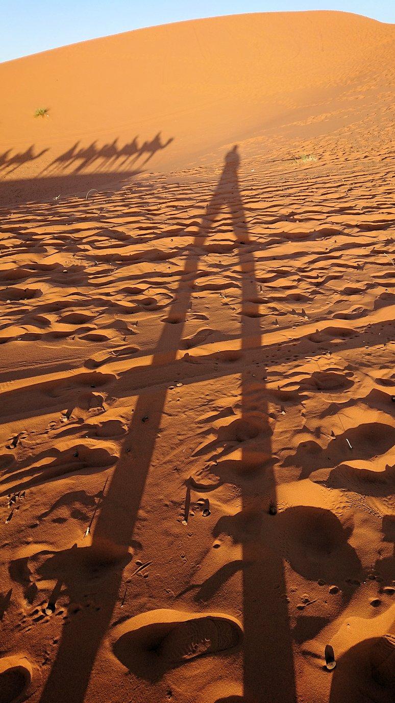 モロッコでサハラ砂漠の朝日鑑賞を終えて帰る道中の様子6