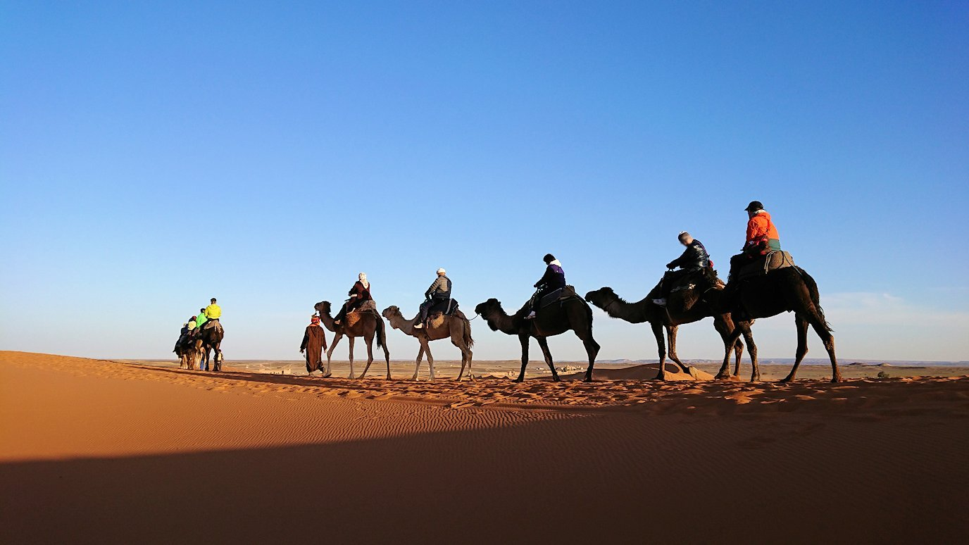 モロッコでサハラ砂漠でラクダに乗って帰るメンバーの写真1