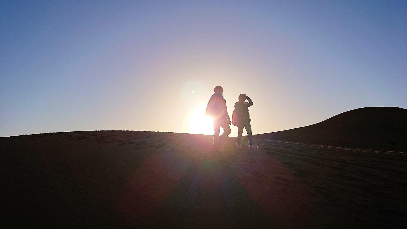 モロッコでサハラ砂漠でラクダに歩いて帰るメンバーの写真