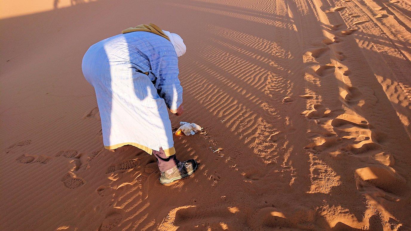 モロッコでサハラ砂漠でラクダに歩いて帰るメンバーの写真1