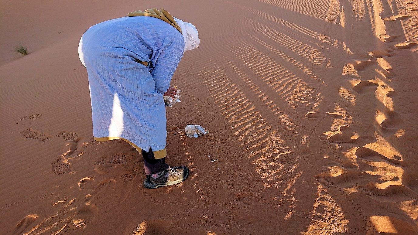 モロッコでサハラ砂漠でラクダに歩いて帰るメンバーの写真2