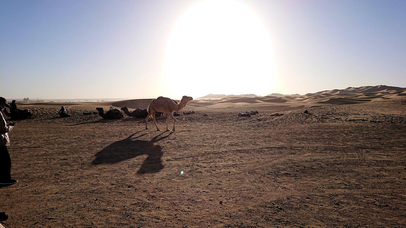サハラ砂漠でベルベル風朝食をいただきます3