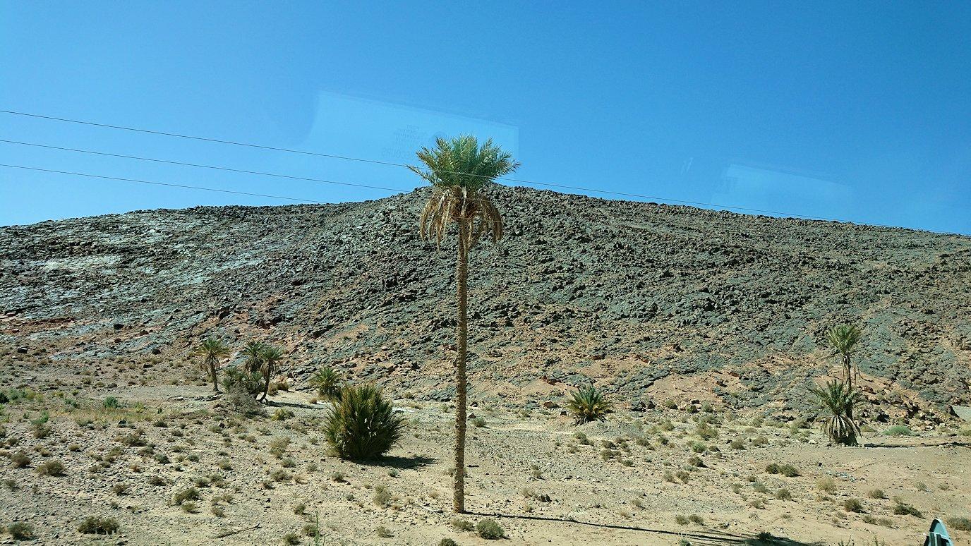 モロッコのカッターラの地下水道溝付近の様子9