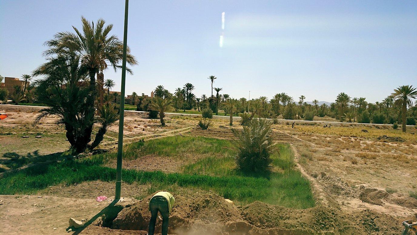 モロッコでカッターラからトドラ渓谷へ向かう途中6