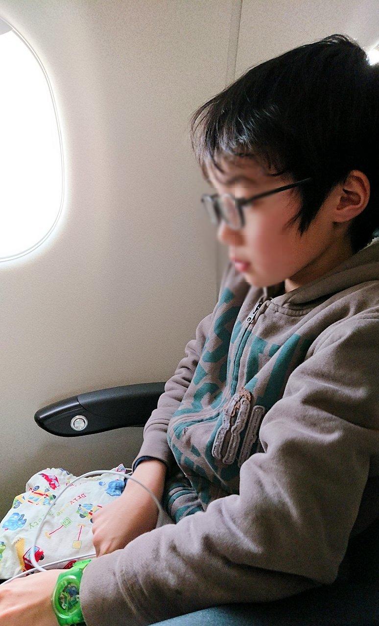 函館空港からJALの飛行機に乗って大阪に帰ります9