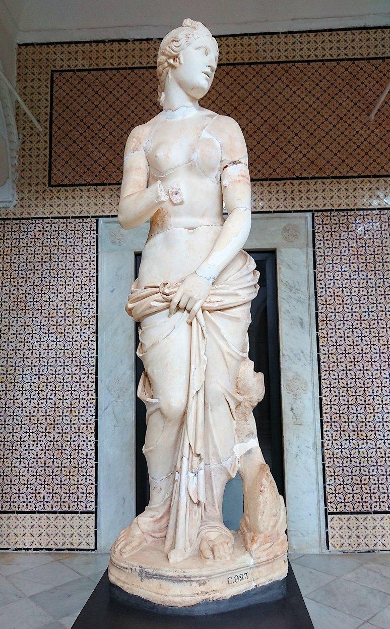 チュニスのバルドー博物館で展示されている像を見ながら散策3