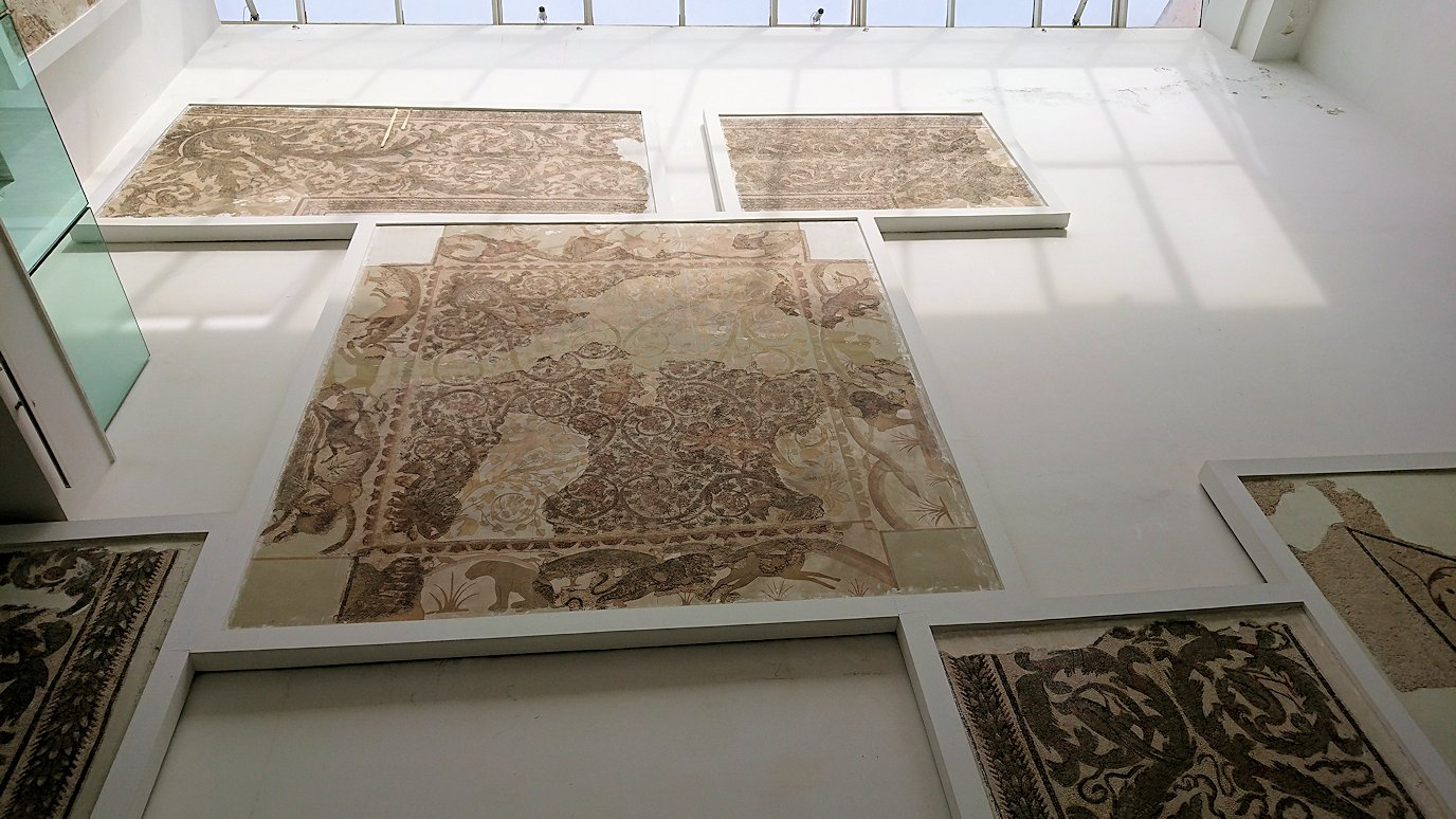 チュニスのバルドー博物館で作品を見て行きます3