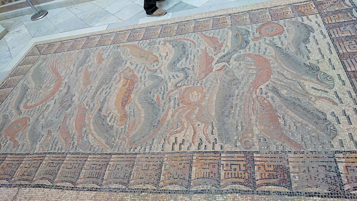 チュニスのバルドー博物館で作品を見て行きます9