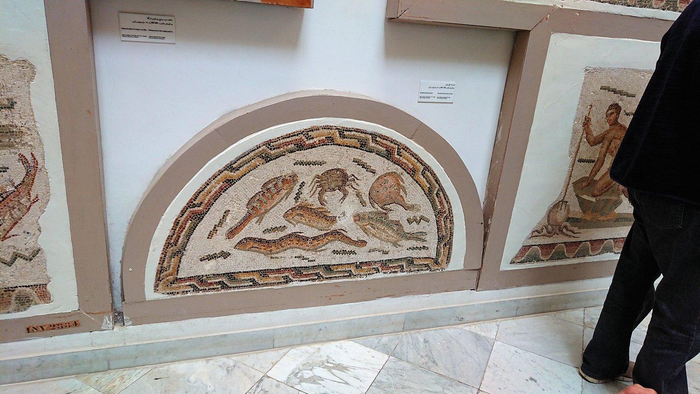 チュニスのバルドー博物館でオデュッセウスの間を見学9